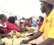 Nevis Tourism To Promote Agro-Tourism