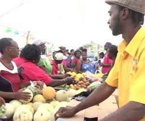 Nevis Agro-Tourism