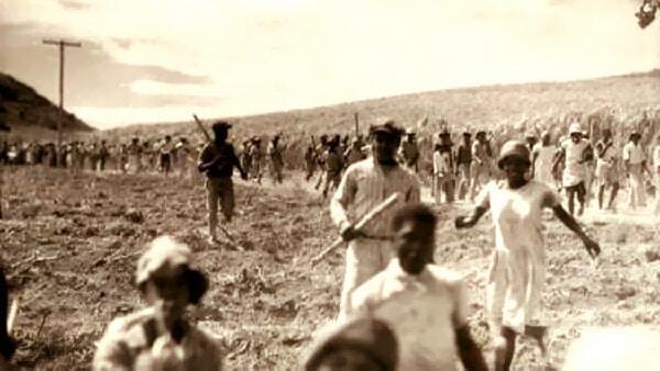 Buckley's Estates Riots 1935