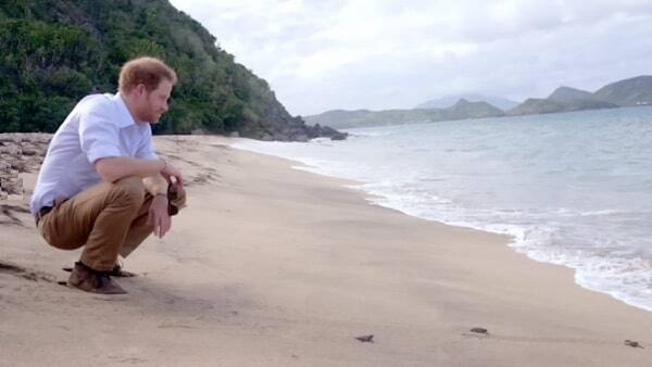 Prince Harry - Lover's Beach Nevis Island
