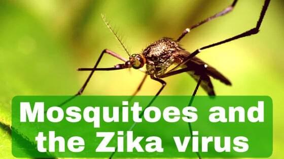 Zika Virus on Nevis Island
