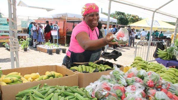 Farmers Market - Nevis Island