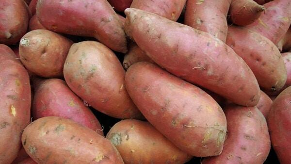 Yams To Be Featured Ingredient For Restaurant Week