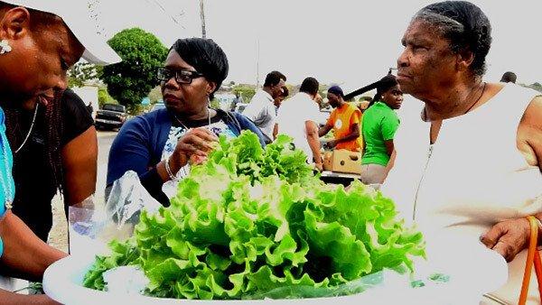 Nevis Farmer's Market