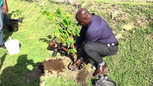 Nevis Deputy PM Jeffers - Tree Planting