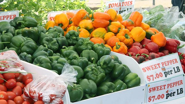 Nevis Crop Production Increase