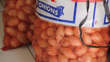Onions Grown On Nevis At Agro-Fest