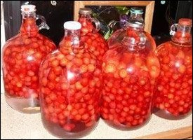 Cherry Bounce Cordial Aged To Perfection
