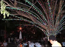 Christmas Tree Lighting - 2011