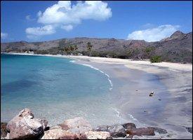 Future Site Of Cockleshell Bay Marina - St. Kitts