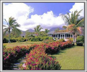Nevis Villa Rental - Coral Reef At Nisbet Beach