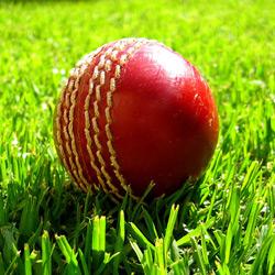 West Indies Cricket Ball