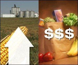 No VAT On Food Items