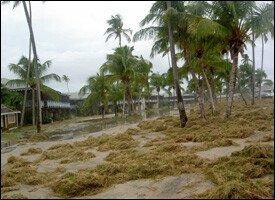 Four Seasons Resort's Beach - Nevis Island