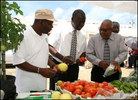 Nevis Grown Fruit and Vegetables