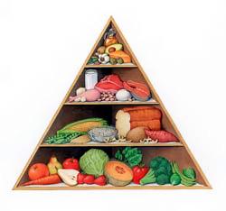 St. Kitts - Nevis Promotes Good Nutrition