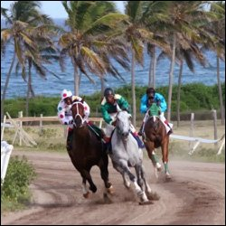 Horse Racing In Nevis at Indian Castle Raceway