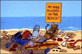 Keep St. Kitts - Nevis' Beaches Clean