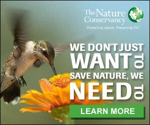 The Nature Conservancy - Donate Now!