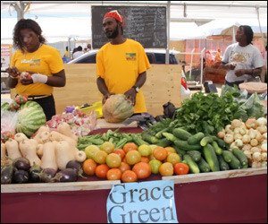 Nevis Ag Day - Grace Green Booth
