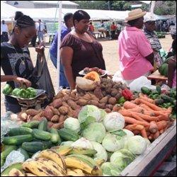 Fresh Produce in St. Kitts - Nevis