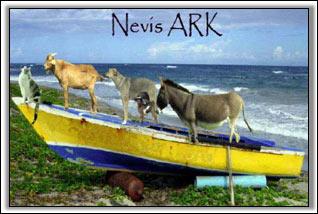 Nevis Humane Society - Frirnds Of The Ark