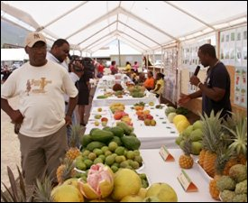Fresh Fruits On Display at The Nevis Fruit Festival 2009