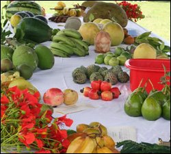 Locally Grown Nevis Fruits and Vegetables