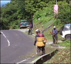 Workers Clearing Debris On Nevis' Main Road