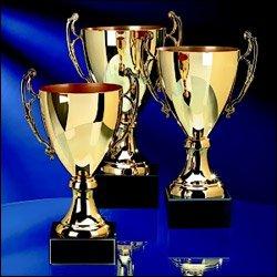Nevis Island Tourism Awarda