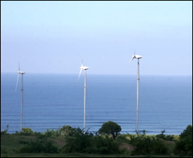 Wind Farm at Maddens - Nevis, Island
