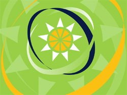 Organization of Eastern Caribbean States Flag