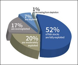 Current Global Overfishing Statistics