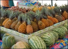 Pineapple and Melons Grown In St. Kitts