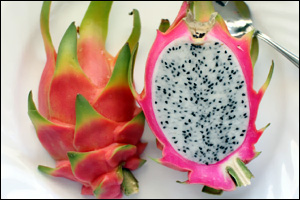 Nevis To Grow Exotic Pitaya Fruit Plants