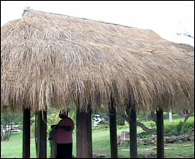 Repaired Hut At Nevisian Heritage Village