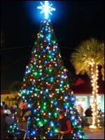 Sandy Point Tree Lighting Ceremony
