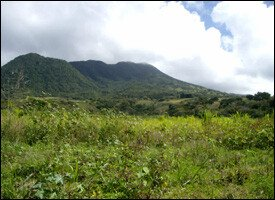 St. Kitts Agricultural Land