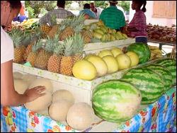 St. Kitts - Nevis Locally Grown Produce