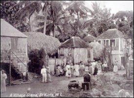 St. Kitts Plantation Housing Circa 1920