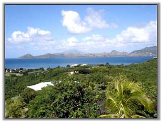 Starlight Villa - Nevis