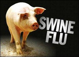 Swine Flu Outbreak In St. Kitts - Nevis