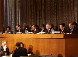 United Nations Decolonization Committee