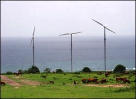 Wind Farm At Madden's Estate
