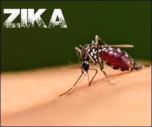 Zika Virus Mosquito Transmission